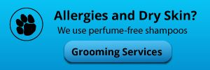 Allergies and Dry Skin? We use perfume-free shampoos