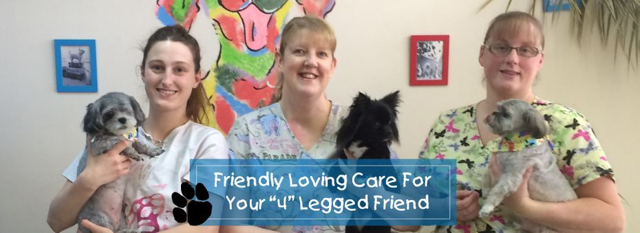 "Friendly Loving Care for Your ""4"" Legged Friend 